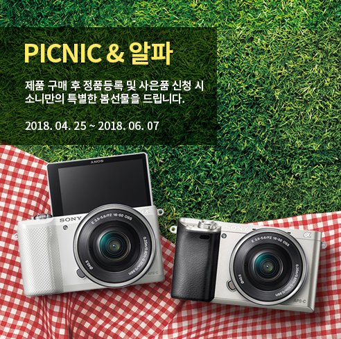 PICNIC and 알파