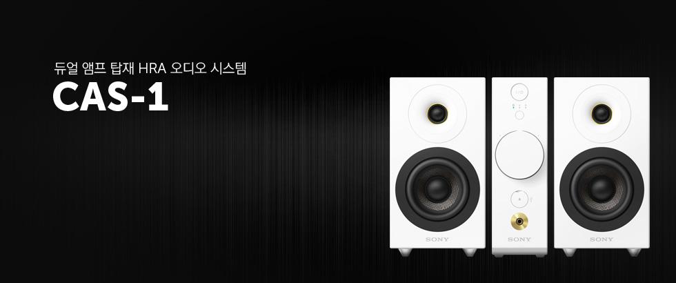 CAS-1 - 듀얼 앰프 탑재 HRA 오디오 시스템