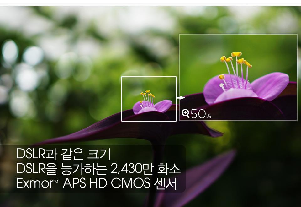 DSLR과 같은 크기 DSLR을 능가하는 2,430만 화소 Exmor™ APS HD CMOS 센서
