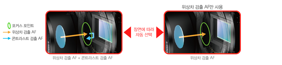 위상차 검출 AF + 콘트라스트 검출 AF와 위상차 검출 AF를 장면에 따라 자동 선택