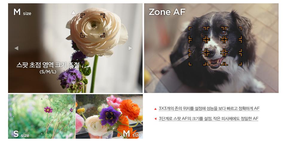 3X3개의 존의 위치를 설정해 성능을 보다 빠르고 정확하게 AF / 3단계로 스팟 AF의 크기를 설정, 작은 피사체에도 정밀한 AF